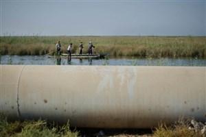 مدیرکل محیط زیست خوزستان:  موافق ساخت فولاد شادگان نیستیم/ کارخانه در حریم تالاب است
