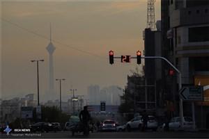 تاثیر مصرف اُمگا ۳ در مقابله با آلودگی هوا