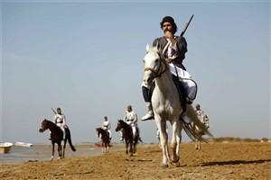 نامه انتقادی  سازندگان «پینوکیو، عامو سردار و رئیسعلی» به حجت الله ایوبی