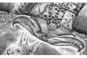 فسیل کرم ۴۰۰ میلیون ساله با آرواره های قدرتمند کشف شد