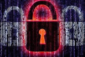 نیمی از وب سایت های جهان از پروتکل امن HTTPS استفاده می کنند