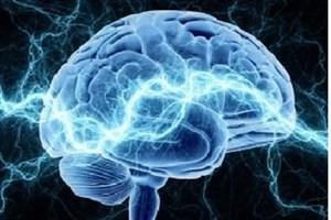 می توان زمان مرگ را پیش بینی کرد؟/امکان پیش بینی زمان مرگ با برآورد سن مغز