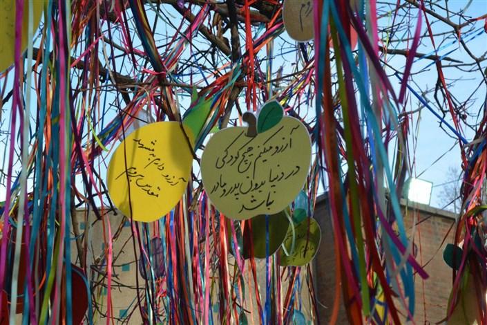 جشن آرزوها ،مرکز قدوسی