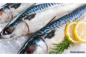 معاون وزیر کشاورزی: عرضه ماهی در نمایشگاه های نوروزی ادامه دارد
