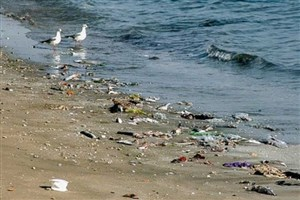زخم زباله بر تن سواحل