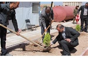 با کاشت هر نهال درخت می توان از پرداخت هزینه های درمانی برای داشتن هوای پاک بی نیاز بود.