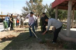 کاشت نهال به مناسبت روز درختکاری در واحد نی ریز