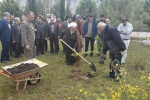 کاشت 2500 اصله نهال در دانشگاه آزاد اسلامی واحد بابل