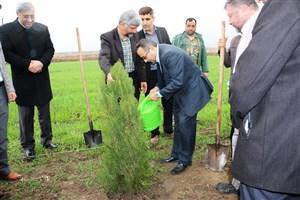 آیین نکوداشت هفته منابع طبیعی و روز درختکاری در واحد آزادشهر برگزار شد