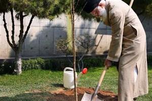 کاشت نهال توسط رهبر معظم انقلاب اسلامی به مناسبت هفته منابع طبیعی