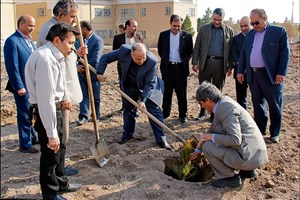 کاشت 1000 اصله نهال در دانشگاه آزاد اسلامی سبزوار