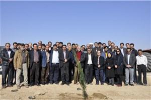 72 اصله نهال در دانشگاه آزاد اسلامی واحد دامغان غرس شد