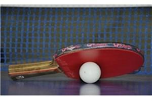 4 بازیکن ایرانی در چلنج جهانی تنیس روی میز بلاروس