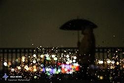 تهران بالاخره بارانی شد و نفس کشید/ عکس
