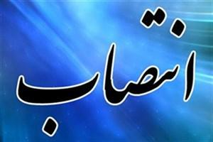 سرپرست اداره کل حقوقی دانشگاه آزاد اسلامی منصوب شد