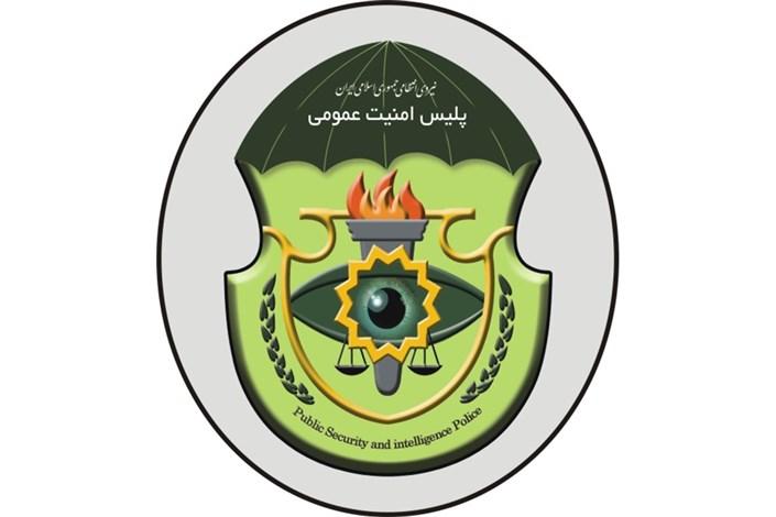 پلیس امنیت عمومی ناجا