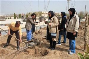 درختکاری و کاشت نهال در  واحد مرودشت