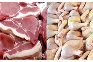 معاون وزیرجهادکشاورزی:دولت رونق تولیدو صادرات محصولات پروتئینی را در دستورکار دارد