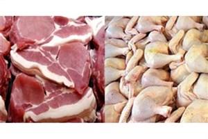 توزیع گوشت مرغ منجمد 57 هزار ریالی در سراسر کشور ادامه دارد