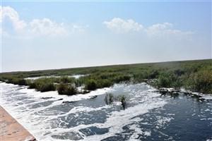 تأمین حقابه تالاب ها از اولویت های مهم زیست محیطی خوزستان است
