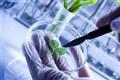 تدوین پیشنویس مصوبه تقسیم کار ملی/بررسی بازار جهانی 20 محصول زیستفناوری
