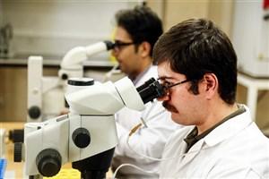 100 آزمایشگاه فعال در دانشگاه علوم پزشکی آزاد تهران فعالیت دارند/ کمبود کلاس درس و فضای آموزشی در دانشگاه علوم پزشکی تهران