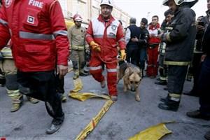 تیم واکنش سریع هلال احمر به مناطق زلزلهزده وارد شد