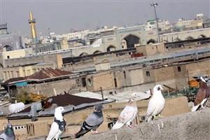 مراکز درمانی تامین اجتماعی در مناطق زلزلهزده خراسان رضوی در حالت آماده باش