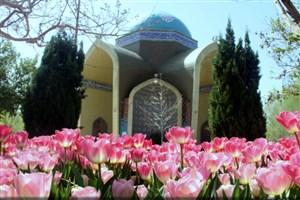 220 هزار گل لاله  در منطقه 16 کاشته شد