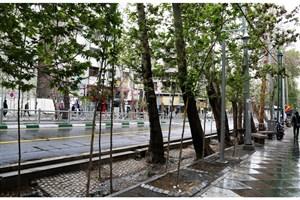 ارتقای کیفی محور خیابان ولیعصر(عج) از میدان راه آهن تا تجریش