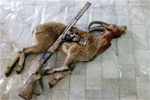 مجروح شدن شکارچی متخلف در درگیری مسلحانه با محیط بانان در سمنان