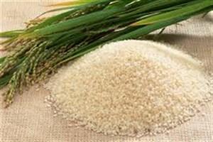 جدیدترین قیمت انواع برنج در بازار/ گران ترین نوع برنج  را بشناسید + جدول