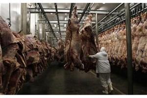 ذخیرهسازی گوشت ومرغ ماه رمضان