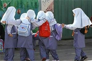 دانش آموزان ایرانی از اختلالات عضلانی اسکلتی رنج می برند