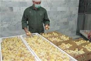 ظرفیت صنعت جوجه کشی ایران دو برابر مصرف داخلی است