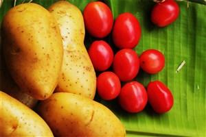 معاون وزیر کشاورزی :   کاهش قیمت سیبزمینی و گوجهفرنگی/ ادامه ارزانی در بازار با تولیدات جدید