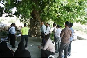 برگزاری اردوی تفریحی کارکنان واحد نی ریز