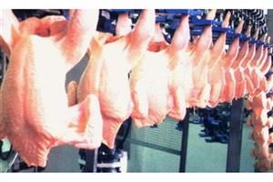 گرانی پیاز و مرغ نشاندهنده بیتدبیری تیم اقتصادی دولت است