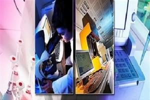ارائه ۲۰ خدمت متنوع به شرکتهای دانشبنیان/لزوم گسترش چتر حمایتی به «نوپا»ها
