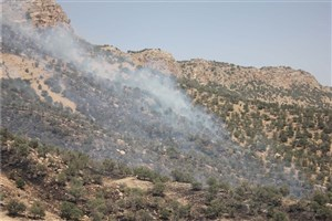 مهار آتشسوزی در کبیرکوه