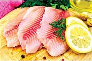 تشویق مردم به مصرف ماهی و نظارت بیشتر بر تغذیه آبزیان