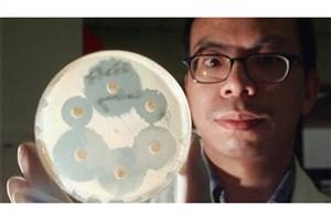 ساخت آنتیبیوتیک 'جادویی' برای مبارزه با میکروبهای مقاوم
