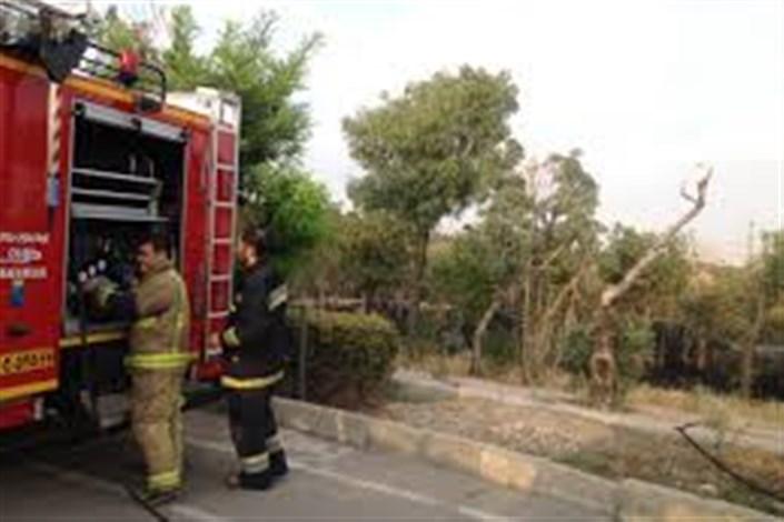 آتشسوزی در پارک پردیسان
