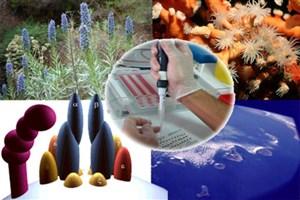 حمایت از 10 طرح پژوهشی حوزه کشاورزی و منابع طبیعی
