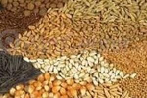 صادرات جو، ذرت و کنجاله سویا آزاد شد