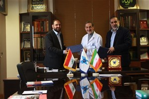 IAU to Develop its International Activities