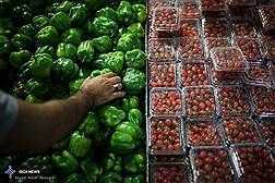 میادین میوه و تره بار فقط جمعه اول فروردین تعطیل هستند