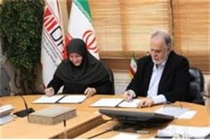 """""""توتال"""" و """"شل"""" متقاضی سرمایهگذاری در منطقه ویژه پارسیان"""