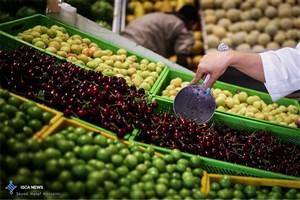 قیمت انواع  میوه و سبزی در بازار