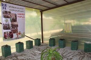 احداث کارگاه تولید ورمی کمپوست در سما نجف آباد گامی در راستای اهداف مدارس سبز
